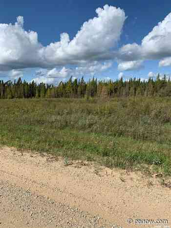 Land RM of Canwood MLS - paNOW