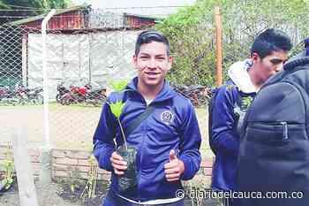Estudiantes caucanos promueven reforestación en Totoró - Diario del Cauca