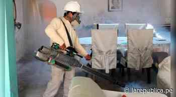 Lambayeque: fumigan 8.452 viviendas contra el dengue en Motupe y Ciudad Eten - LaRepública.pe
