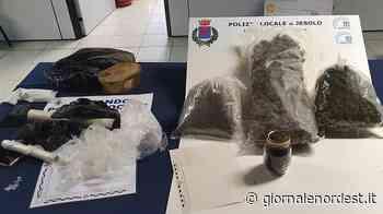 Arrestati a Ceggia, marito e moglie con 2 kili di Marijuana - Giornale Nord Est