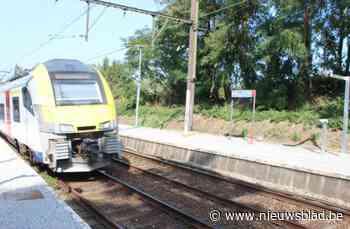 Ruim duizend handtekeningen tegen pyloon aan treinhalte Holl... (Linkebeek) - Het Nieuwsblad