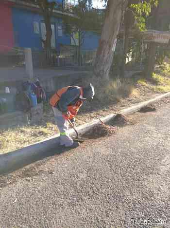 Aseo público en Lagos de Moreno inicia trabajos de limpieza en avenidas y arroyos de la ciudad - UDG TV - UDG TV