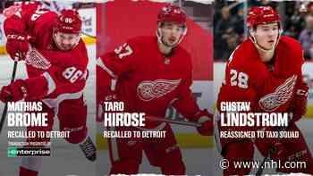 Detroit recalls Brome and Hirose - BlueJackets.com