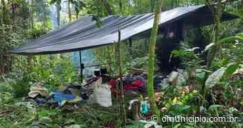 Polícia encontra acampamento clandestino usado para furtar palmitos no Vale do Itajaí - O Munícipio