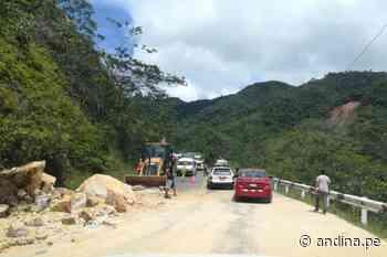 Loreto: MTC garantiza recursos para asfaltado de carretera Yurimaguas-San Rafael - Agencia Andina
