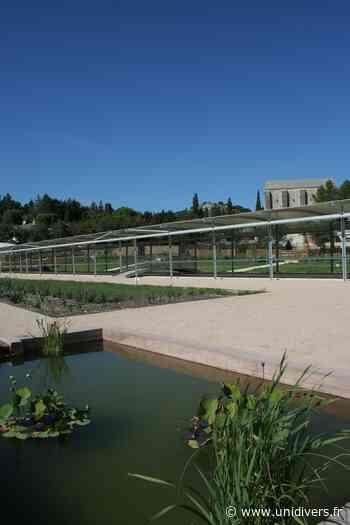 Découverte du Jardin Romain de Caumont-sur-Durance Jardin romain de Caumont vendredi 4 juin 2021 - Unidivers