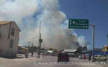 Reportan incendio forestal en San Juanito - El Heraldo de Chihuahua