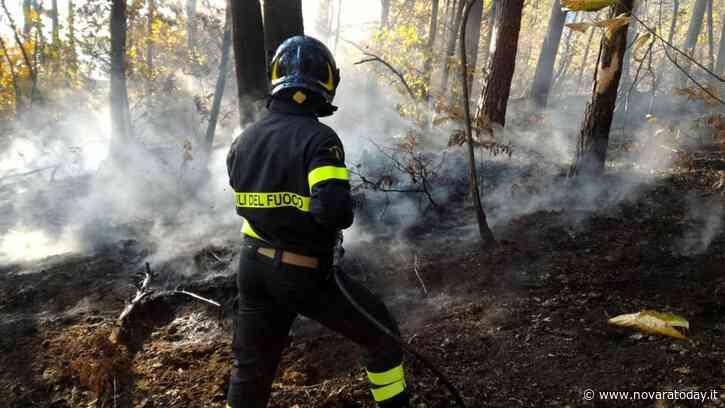 Fiamme nei boschi di Borgo Ticino, la Forestale denuncia una persona - NovaraToday