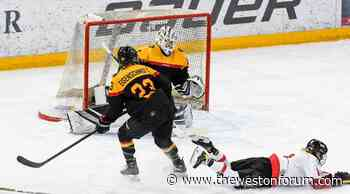 Ice Hockey Photo Gallery: Germany loses its second Test match against Austria in Füssen with 2: 3 - The Weston Forum