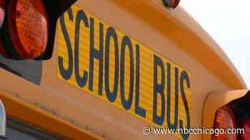 Wisconsin Driver, Attendant Lose Jobs After Leaving Child on School Bus - NBC Chicago