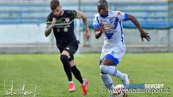 Scialbo pari contro l'Altamura: il Brindisi non lascia la zona playout - BrindisiReport