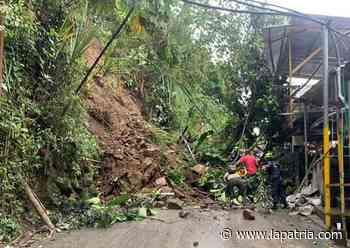 Desprendimientos de rocas y caída de árboles generan emergencias en Marmato - La Patria.com