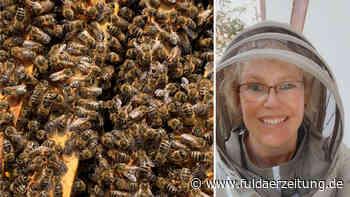 Trend Imkern: Kreis Fulda stellt Verena Rübsam als Bienen-Sachverständige vor - Fuldaer Zeitung