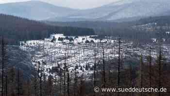 Harz lockt mit letzten Schneeresten - Süddeutsche Zeitung