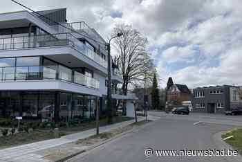Ruimte, vrijwilligers en vergunningen essentieel voor buurtc... (Willebroek) - Het Nieuwsblad