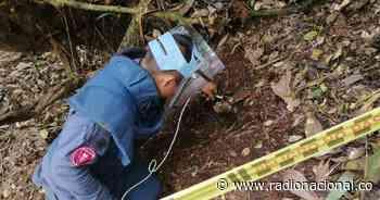 Rovira será declarado libre de minas antipersonal en Tolima - Radio Nacional de Colombia