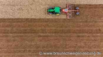 Verteilung von EU-Agrargeldern: Ministerien einigen sich bei Agrarreform auf Öko-Anteil