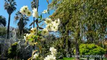 """""""Era di Maggio"""", la Festa di Primavera all'Orto Botanico"""