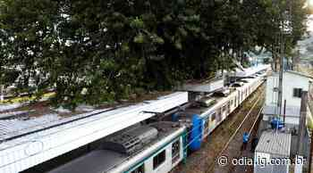 Devido a manutenção, circulação de trens entre Japeri e Paracambi não funciona neste domingo - Jornal O Dia