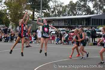 Echuca keep unbeaten start going in GVL netball match against Benalla - Shepparton News