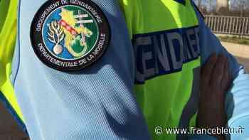 Puttelange-lès Thionville : la femme déclarée disparue retrouvée saine et sauve - France Bleu