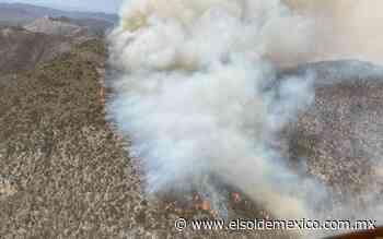 Incendio forestal de San Luis Potosí se extiende a Nuevo León - El Sol de México