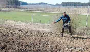Wildbienen in Attenhofen - Eh-da-Flächenprojekts umgesetzt - idowa