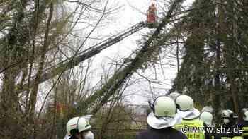 Feuerwehreinsatz Bargteheide: Großer Baum droht auf Wanderweg und Straße zu stürzen | shz.de - shz.de