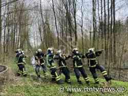 Bargteheide: Gefahrenstelle im Wald beseitigt | *rtn - RTN - News und Bilder aus dem Norden