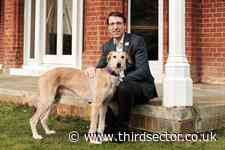 Battersea appoints new chief executive