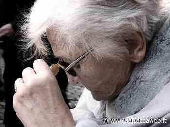 Denunciati i balordi che spaventano le vecchiette a Lonigo - La PiazzaWeb - La Piazza