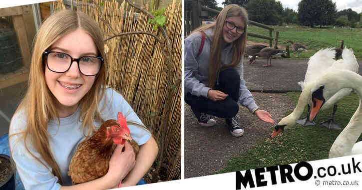 Animal management student doesn't have to do farming module because she's vegan
