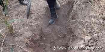 Encuentran semienterrado cadáver de desaparecido en Santiago Nonualco - La Prensa Grafica
