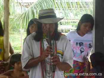 La ONIC rechazó homicidio del Jaibaná, Rafael Domicó Carupia, en Dabeiba [VIDEO] - Extra Palmira