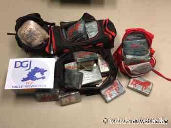 Speurders vinden 70 kilogram cocaïne en 200.000 euro bij huiszoekingen