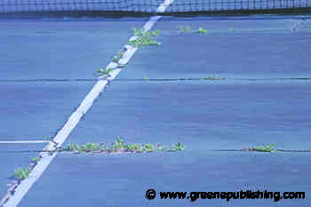 Playing tennis in the weeds – Greene Publishing, Inc. - Madison County Carrier