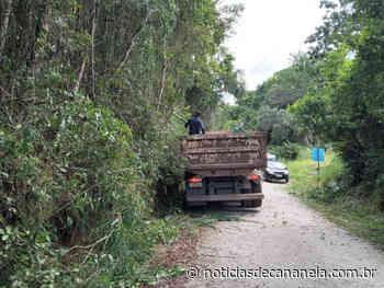 Prefeitura de Cananeia realiza limpeza, poda e roçada das vias públicas - Noticia de Cananéia