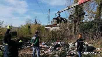 Discarica abusiva di materiali edili nel bosco della Tenuta di Tombolo: bonifica e multa da 6mila euro - PisaToday