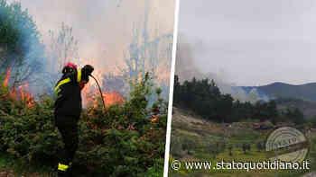 Vico del Gargano: grosso incendio in località Coppa della Guardia zona Foresta Umbra - StatoQuotidiano.it