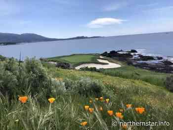 Pebble Beach Golf Links, the pinnacle of public golf - Northern Star Online