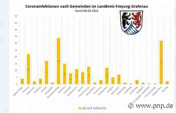 Hohes Ansteckungsgefälle im Landkreis FRG: Grafenauer Land Top, Altlandkreis Wolfstein Flop - Passauer Neue Presse
