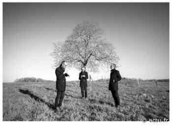 Val-d'Oise. Le photographe de Parmain Sébastien Siraudeau sort un disque et un livre autour d'un arbre - La Gazette du Val d'Oise - L'Echo Régional