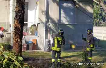 Albero in fiamme a Olgiate Olona, intervento dei Vigili del Fuoco - Prima Saronno