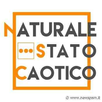NaturaleStatoCaotico: continua il progetto per un concerto internazionale a Brindisi - newSpam.it
