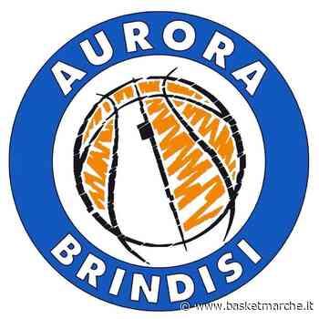 U15 Eccellenza, l'Aurora Brindisi si impone sulla Fortitudo Francavilla - Under 15 Eccellenza Puglia Girone B - Basketmarche.it