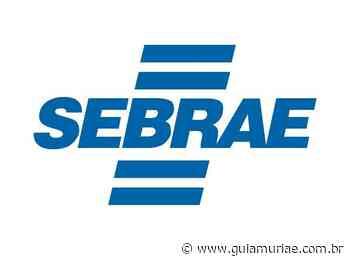 SEBRAE abre vaga de emprego em Cataguases e forma de cadastro de reserva para unidades da região - Guia Muriaé