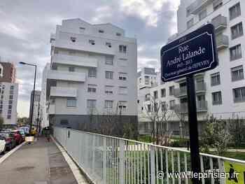 Evry-Courcouronnes : l'auteur présumé du coup de feu mortel placé en détention provisoire - Le Parisien