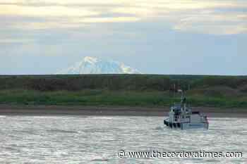 Bristol Bay salmon season opens June 1 - The cordova Times