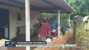 Trabalhadores são resgatados de fazenda em Ituverava, SP, em condições análogas à escravidão - G1