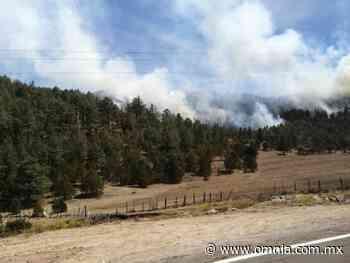Fuerte incendio forestal en la Sierra de San Juanito - Omnia